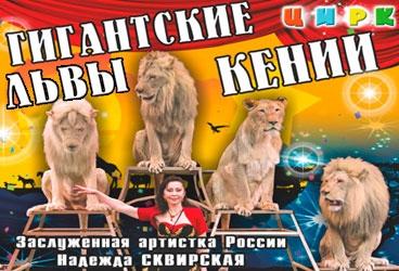 Гигантские львы кении цирк в волгограде купить билеты мост кино афиши днепр
